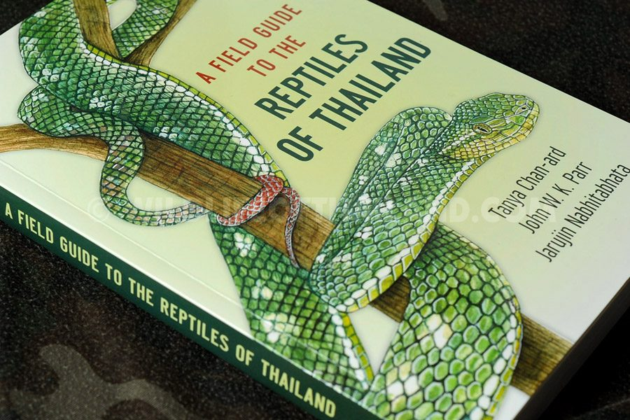 A Field Guide to the Reptiles of Thailand - Tanya Chan-ard